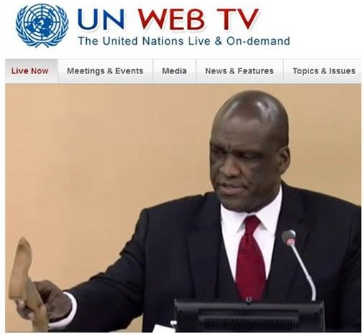 Screenshot from the moment the IYL resolution was adopted by the strike of the hammer of John William Ashe, the President of the UN general assembly in December 2013. Credits: John Dudley