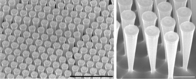 The scanning electron microscopies (SEM) show how regularly the funnels etched in a silicon substrate are arranged (left: the line segment = 5 microns; right: 1 micron). The funnels measure about 800 nanometres in diameter above and run down to about a hundred nanometres at the tip. Credit: S. Schmitt / MPL