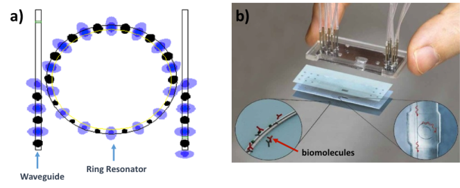 Figure 2. a) A computer-simulated ring resonator depicting continuous wave input at resonance. Credit: Wikipedia b) Microfluidic integration of a slotted ring resonator sensor with the insets showing capture of target biomolecules and circulating light path. (3)