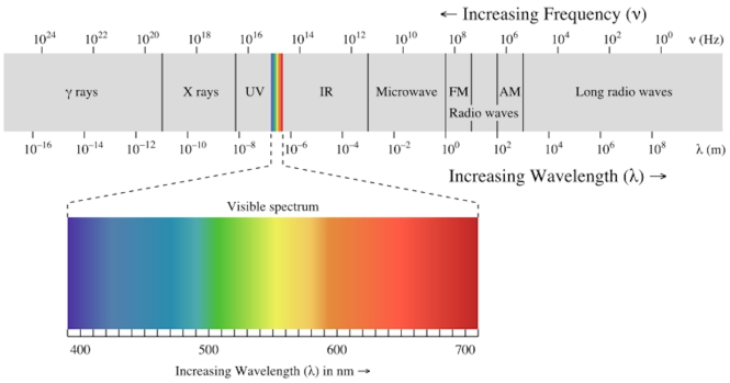 Electromagnetic spectrum with visible light highlighted. Credit: Wikipedia (Author Philip Ronan)