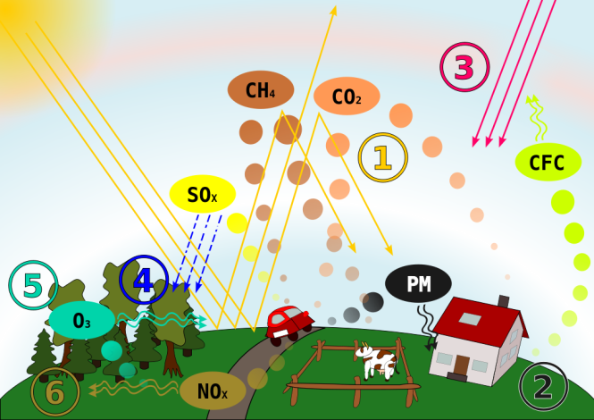 Schematic drawing, causes and effects of air pollution: (1) greenhouse effect, (2) particulate contamination, (3) increased UV radiation, (4) acid rain, (5) increased ground level ozone concentration, (6) increased levels of nitrogen oxides. Credit: Wikimedia Commons.