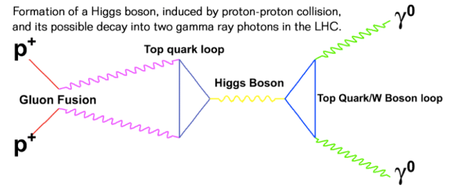 Diagram showing how can we produce a Higgs boson and then get its decay into two photons. Credit: CERN.