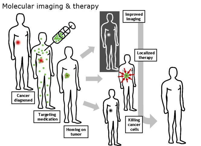 A schematic illustration showing how nanoparticles or other cancer drugs might be used to treat cancer.